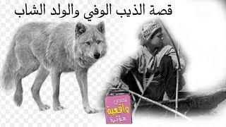 قصة الذيب الوفي والشاب الصياد - قصة ريفية