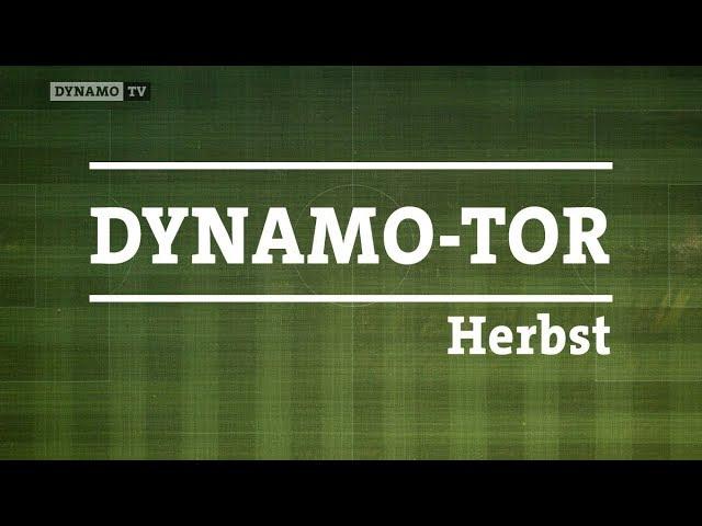 "Wählt euer ""Dynamo-Tor"" im Herbst"