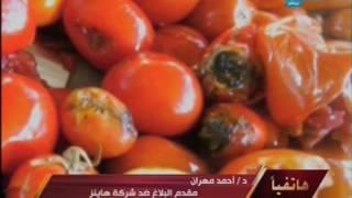 فيديو| مقدم بلاغ «هاينز»: «المصنع به فئران وصراصير يتم فرمها مع الطماطم»