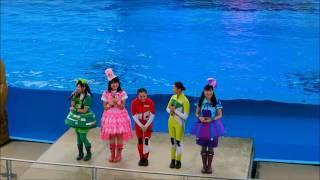 横浜・八景島シーパラダイスでは、2017年4月28日から「海の動物たちのシ...