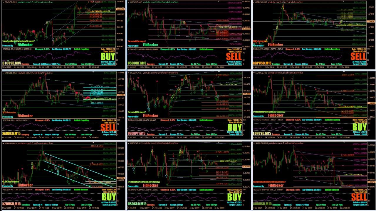 Live Forex Signals | Forex Signals | VIP Forex Signals