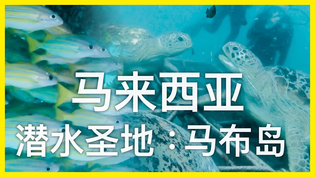 海洋奇幻之旅~马来西亚的潜水圣地~马布岛丨【探透】第一季 25期