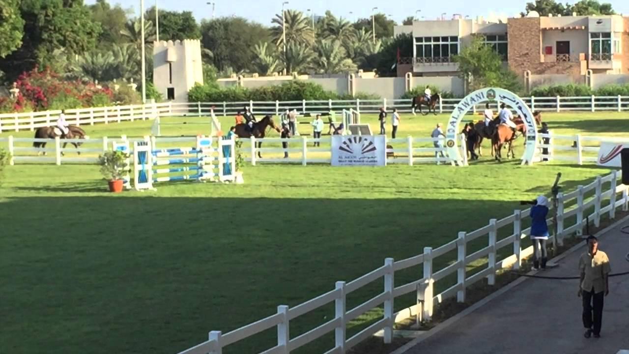 Corrico In Abu Dhabi Equestrian Club With Rider Mohammed