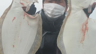 천리포 20년11월21일 오전 우럭 오후 광어