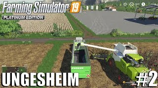 Combining fields, Sunflowers Harvest| Ungesheim | FS19 Timelapse #2 | Farming Simulator 19 Timelapse