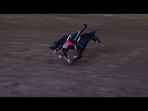 Horse acrobatic show  (Semana de la Chilenidad) at Parque Padre Hurtado in Santiago de Chile