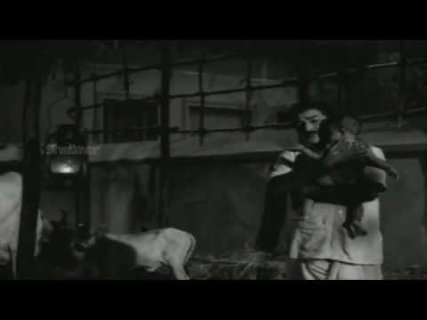 Kalam Marindi Movie (1972)   Ye Thalli Video Song   Sobhan Babu, Sarada & Gummadi