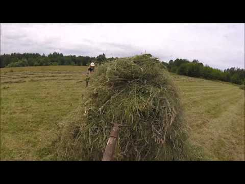 знакомство на хутор