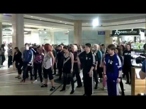 Flash Mob at a Mall in Reykjavik/Iceland