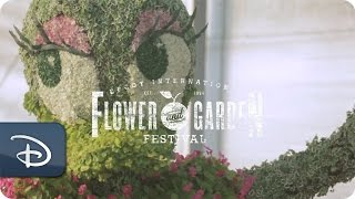 Fresh Epcot With Eric Darden - Horticulture Manager | Walt Disney World