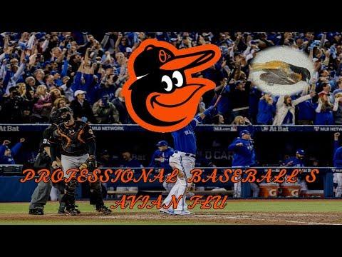 The Baltimore Orioles: Professional Baseball's Avian Flu