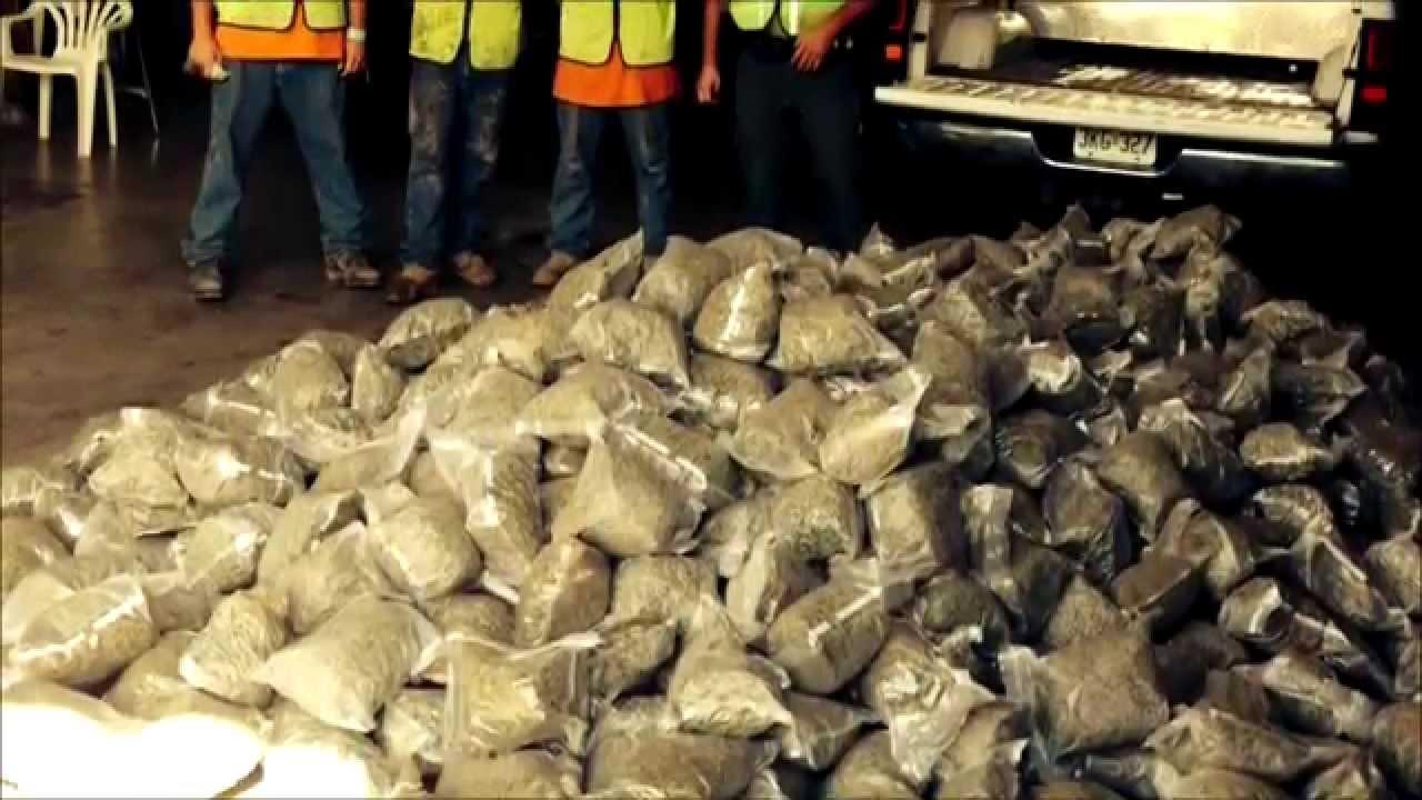 Inmate Work Crew Recovers $1M Drug Stash & Inmate Work Crew Recovers $1M Drug Stash - YouTube Aboutintivar.Com