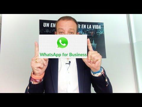 WhatsApp en los negocios (Whatsapp Business)