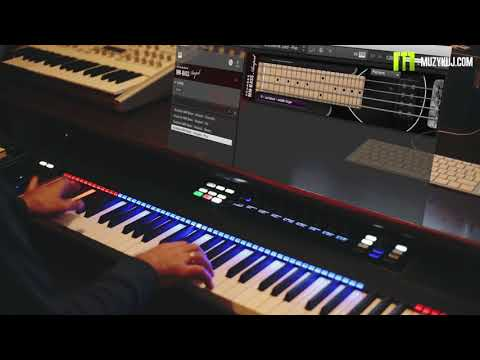 MM scarbee bass Amped - Native Instuments demo By Muzykuj.com
