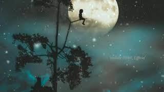 Good night Whatsapp Status   Good Night   Good Night Sweet Dreams   Rohit_Official