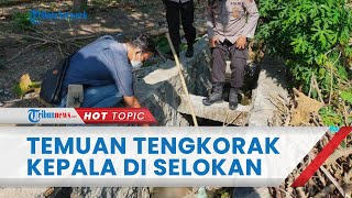 Warga Sragen Geger dengan Temuan Kerangka Kepala Manusia di Selokan, Tubuh Terpisah 200 Meter