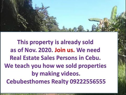 Land for sale in Mandaue City Cebu 7,825 sqm for real estate development