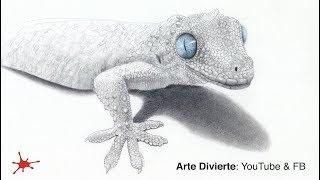 CÓMO DIBUJAR UN GECO (reptil) - Narrado