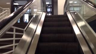 montgomery twinkie m escalators at marshalls nicollet mall in downtown minneapolis mn