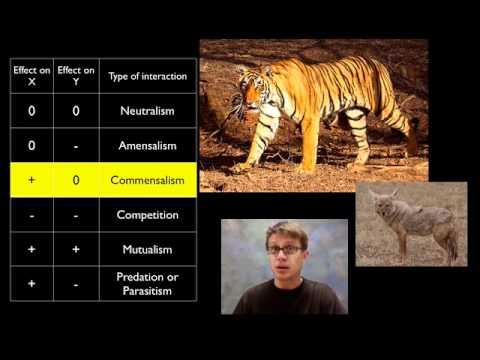 Populations
