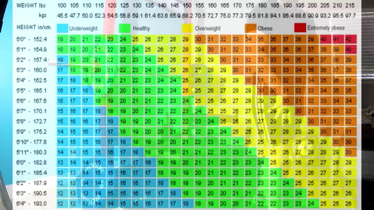 Bmi Chart For Female Athletes - Aljism Blog