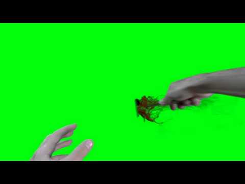 Green screen some attack Knife first person with blood