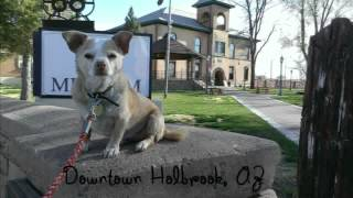 And A Dog Named Maizzy - Photo Essay Of A Southwest Road Trip