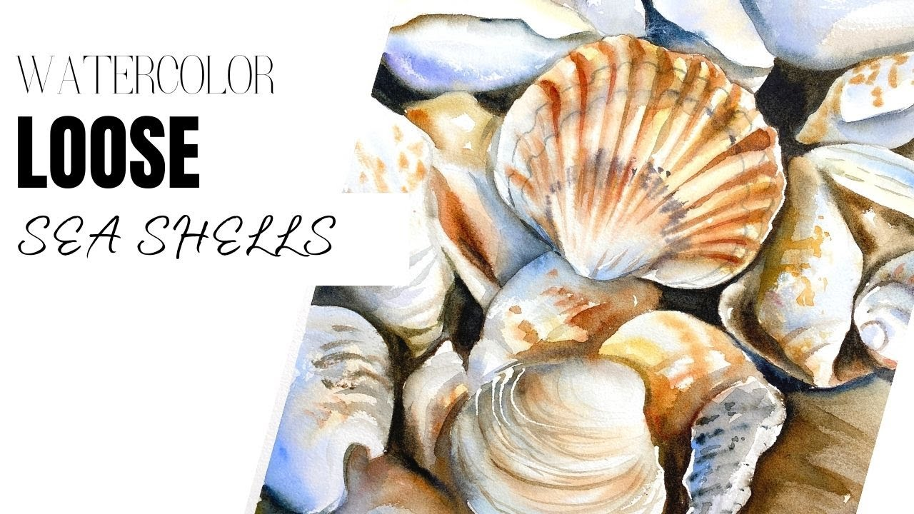 Sea shells in watercolors