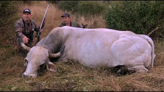 Gambar cover Caza del toro salvaje australiano