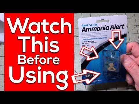 Seachem Ammonia Alert Facts - Ammonia Testing Made Easy [MUST SEE]