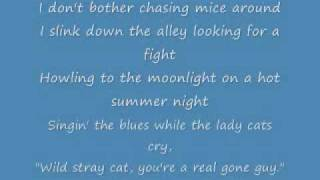 Stray Cat Strut with Lyrics