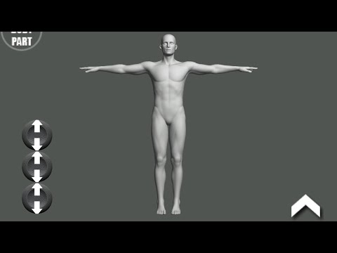 Pose Tool 3d For Android  2017