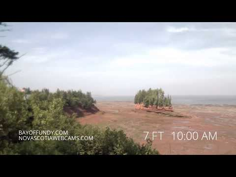 50ft Tides In Burntcoat Head Park, Nova Scotia