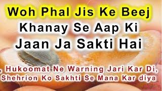 Woh Phal Jis Ke Beej Khanay Se Aap Ki Jaan Ja Sakti  Hai || Health Tips Video In Hindi \ Urdu