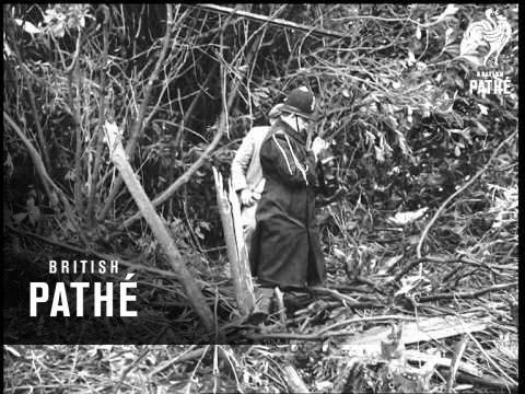 Plane Crash Aka 37 Die In Caravelle Crash (1967)