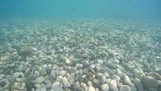 Подводная съемка на камеру SJCam SJ8 Pro