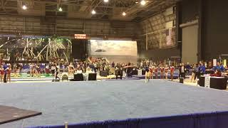 Delaney DeHaan Florida State gymnastics meet 2018 level 9