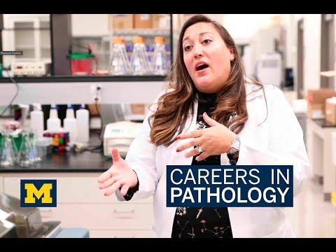 Careers in Pathology: Dr. Analisa DiFeo
