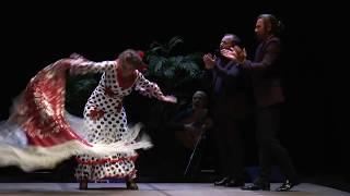 Pastora Galvàn: Flamenco live at Teatro Rossetti