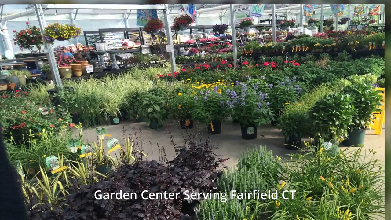 Garden Center Fairfield CT Home Garden Showplace YouTube