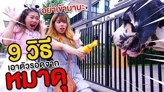 หมาดุตัวใหญ่ยักษ์จะรอดไหม 9 วิธีเอาตัวรอดจากหมาดุ | Pony Kids