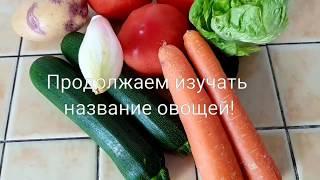 11 Урок французского от Дюмонов ! Название овощей 2 !