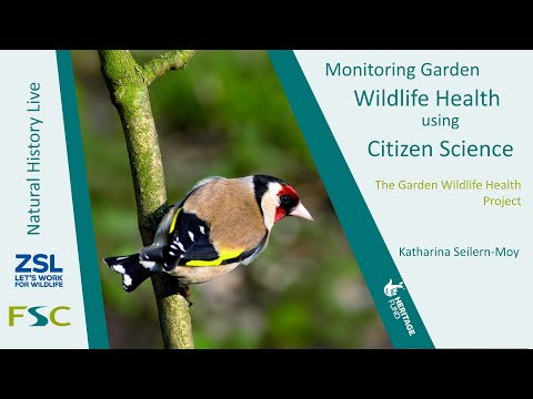 Natural History Live: Monitoring Garden Wildlife Health Using Citizen Science