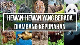 Gambar cover Tragis!! Ga Nyangka Hewan-hewan Ini Ternyata Hampir Punah