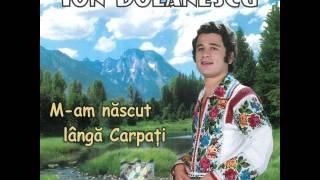 Download Ion Dolănescu - De-ar ști omul ce e viața