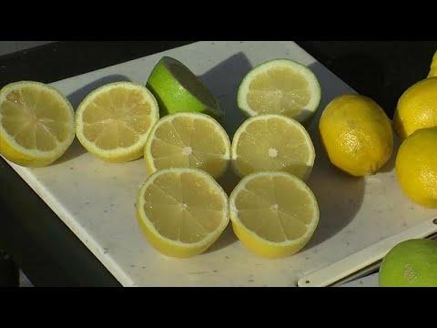 comercializan-los-limones-sin-semillas