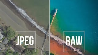 How to shoot RAW on your iPhone or Android!