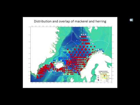 Hein Rune Skjoldal - WGIBAR for the Barents Sea and WGINOR for the Norwegian Sea LME