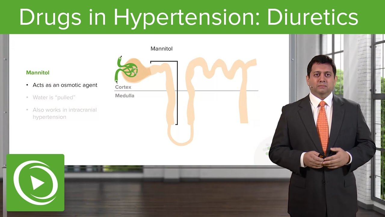Drugs in Hypertension: Diuretics – Cardiovascular Pharmacology | Lecturio