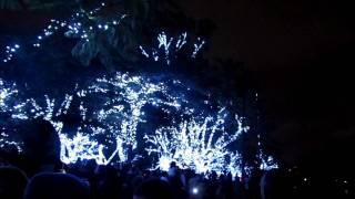 Parque do Ibirapuera - Decoração de Natal 2011.wmv